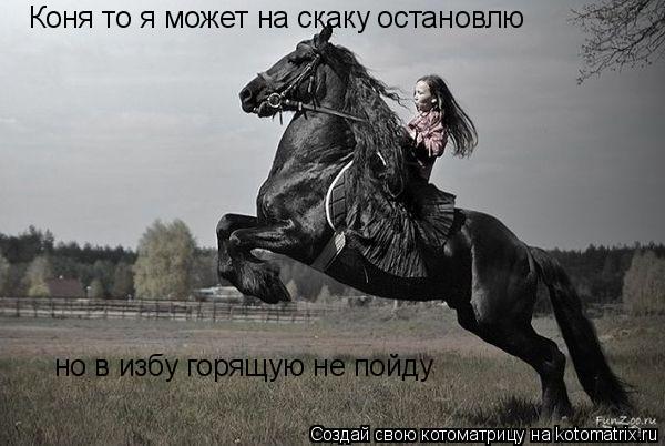 Котоматрица: Коня то я может на скаку остановлю но в избу горящую не пойду