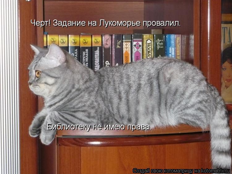 Котоматрица: Черт! Задание на Лукоморье провалил. Библиотеку не имею права.
