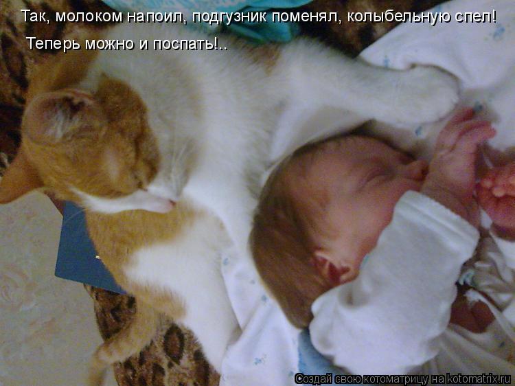 Котоматрица: Так, молоком напоил, подгузник поменял, колыбельную спел! Теперь можно и поспать!..