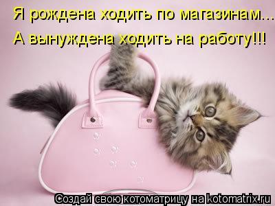 Котоматрица: Я рождена ходить по магазинам... А вынуждена ходить на работу!!!