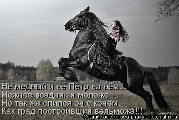 Котоматрица: Не медный и не Пётр на нём... Нежнее всадник и моложе... Но так же слился он с конём. Как град построивший вельможа!!!