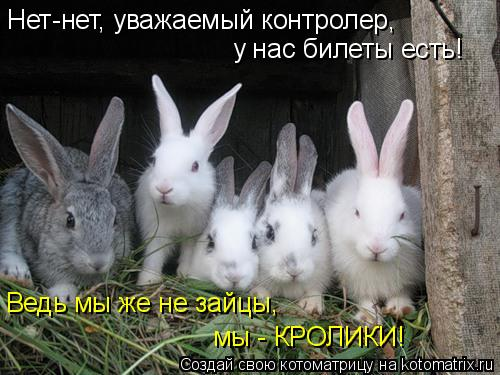 Котоматрица: Нет-нет, уважаемый контролер,  у нас билеты есть! Ведь мы же не зайцы,  мы - КРОЛИКИ!