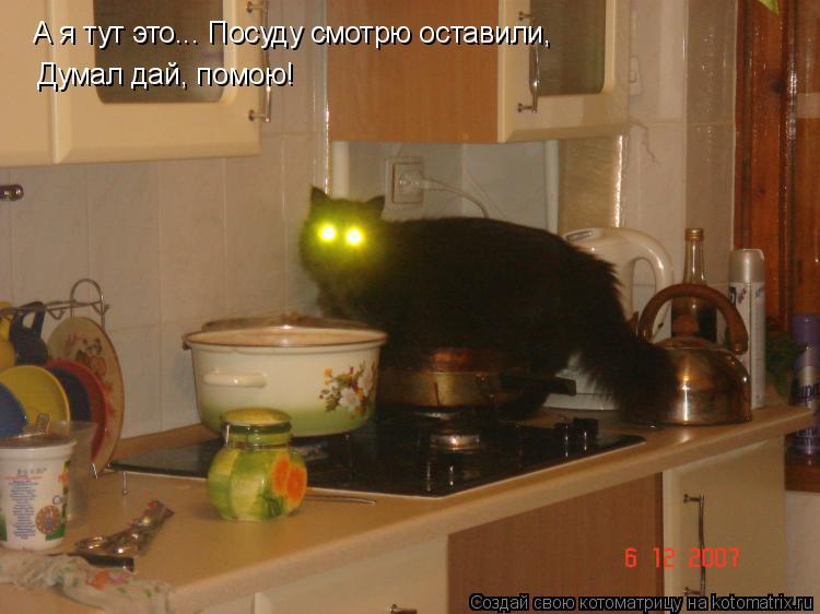 Котоматрица: А я тут это... Посуду смотрю оставили,  Думал дай, помою!