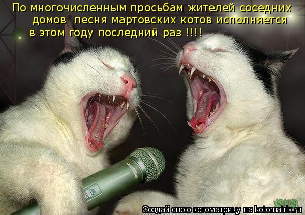 Котоматрица: По многочисленным просьбам жителей соседних  домов  песня мартовских котов исполняется  в этом году последний раз !!!!