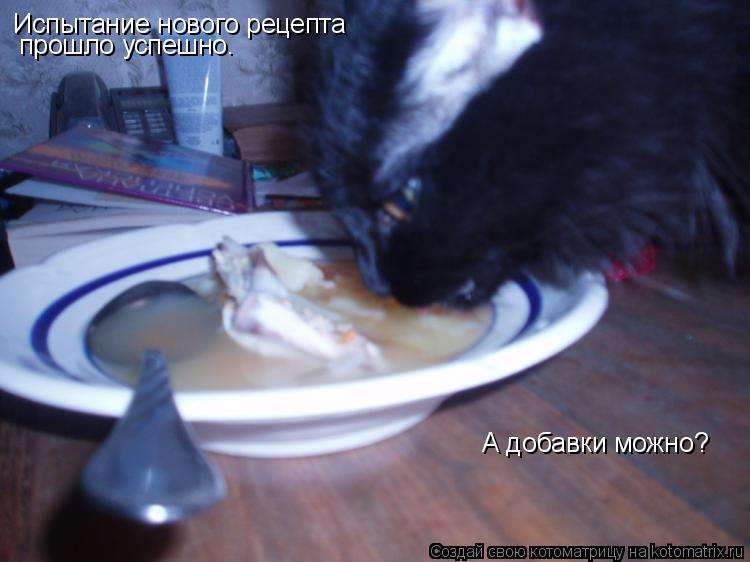 Котоматрица: Испытание нового рецепта прошло успешно. А добавки можно?