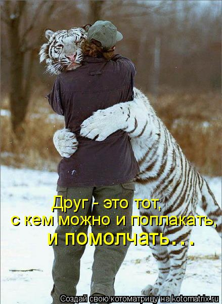 Котоматрица: Друг - это тот, с кем можно и поплакать, и помолчать ...