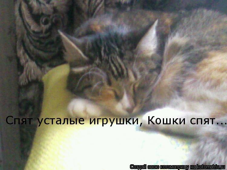 Котоматрица: Спят усталые игрушки, Кошки спят...