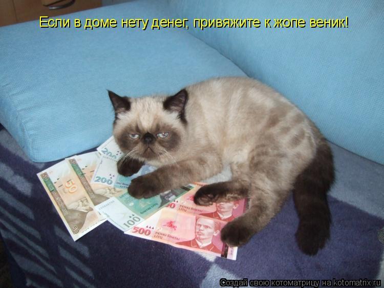 Котоматрица: Если в доме нету денег, привяжите к жопе веник!