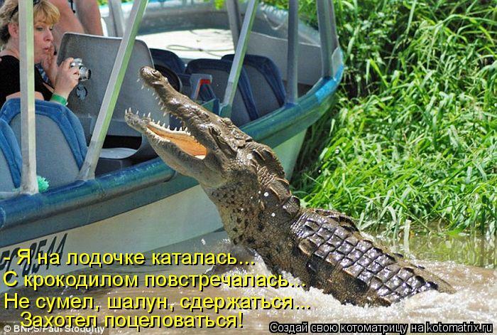 Котоматрица: - Я на лодочке каталась... С крокодилом повстречалась... Не сумел, шалун, сдержаться... Захотел поцеловаться!
