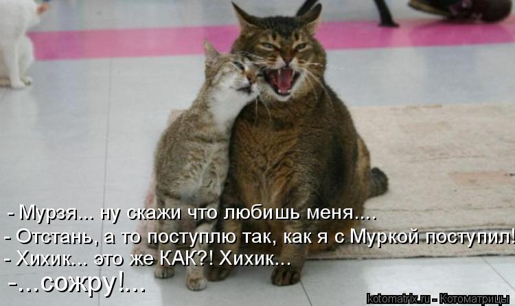 Котоматрица: - Мурзя... ну скажи что любишь меня.... - Отстань, а то поступлю так, как я с Муркой поступил! - Хихик... это же КАК?! Хихик... -...сожру!...