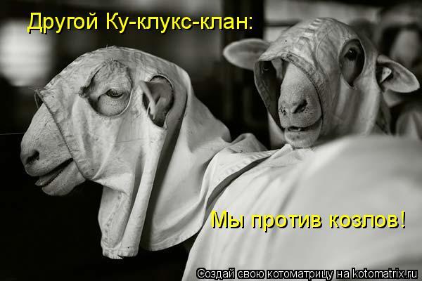 Котоматрица: Другой Ку-клукс-клан:  Мы против козлов!