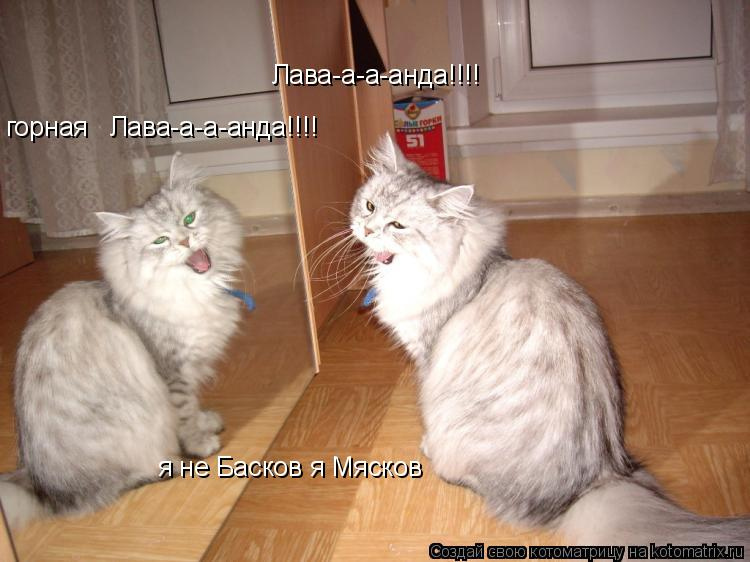 Котоматрица: Лава-а-а-анда!!!! горная   Лава-а-а-анда!!!! я не Басков я Мясков