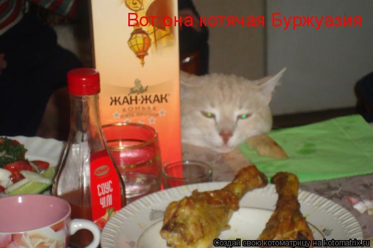 Котоматрица: Вот она котячая Буржуазия
