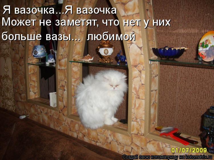 Котоматрица: Я вазочка...Я вазочка Может не заметят, что нет у них больше вазы...  любимой