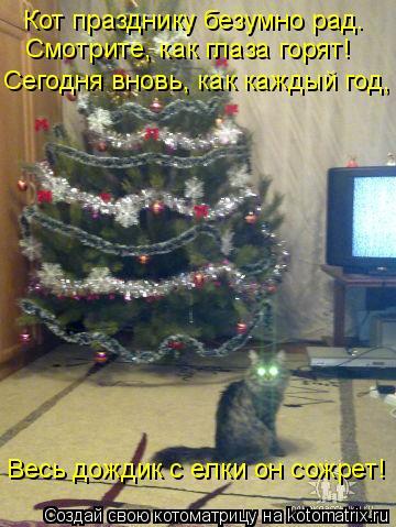 Котоматрица: Кот празднику безумно рад. Смотрите, как глаза горят! Сегодня вновь, как каждый год, Весь дождик с елки он сожрет!