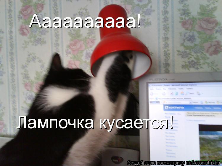 Котоматрица: Аааааааааа! Лампочка кусается!