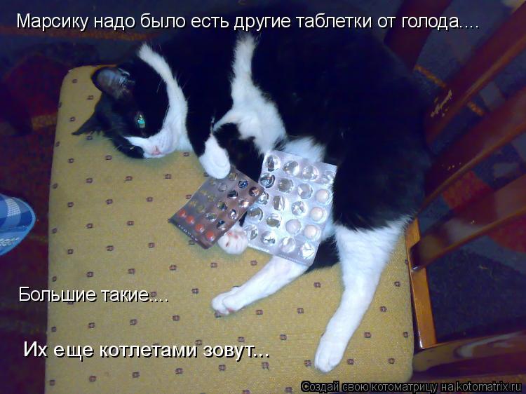 Котоматрица: Марсику надо было есть другие таблетки от голода.... Большие такие.... Их еще котлетами зовут...