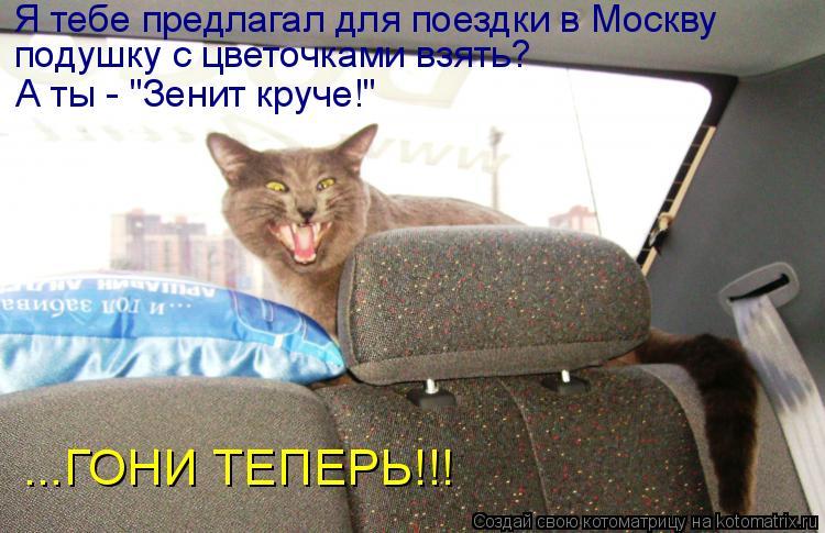 """Котоматрица: Я тебе предлагал для поездки в Москву подушку с цветочками взять? А ты - """"Зенит круче!"""" ...ГОНИ ТЕПЕРЬ!!!"""