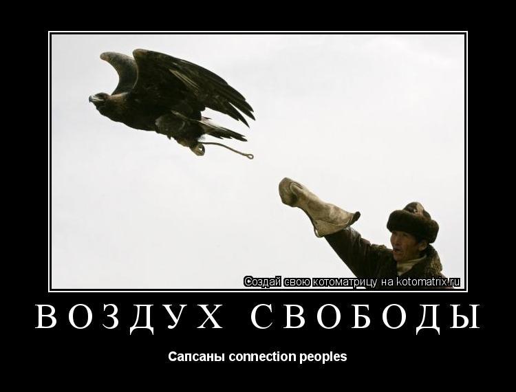 Котоматрица: Воздух свободы Сапсаны connection peoples