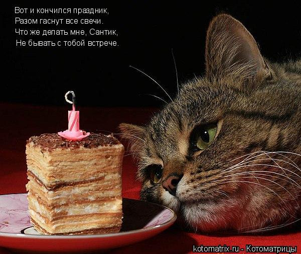 Котоматрица: Вот и кончился праздник, Разом гаснут все свечи. Что же делать мне, Сантик, Не бывать с тобой встрече.