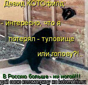 Котоматрица: Девид КОТОфилд: - интересно, что я  потерял - туловище или голову?!.. В Россию больше - ни ногой!!!