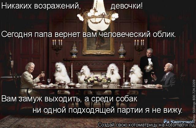 Котоматрица: девочки!  Вам замуж выходить, а среди собак ни одной подходящей партии я не вижу. Сегодня папа вернет вам человеческий облик. Никаких возраж