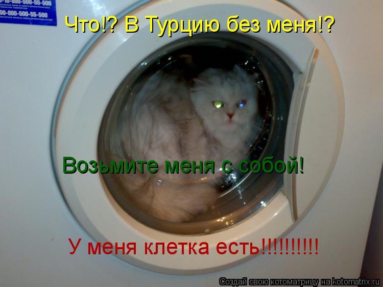 Котоматрица: Что!? В Турцию без меня!? Возьмите меня с собой! У меня клетка есть!!!!!!!!!!