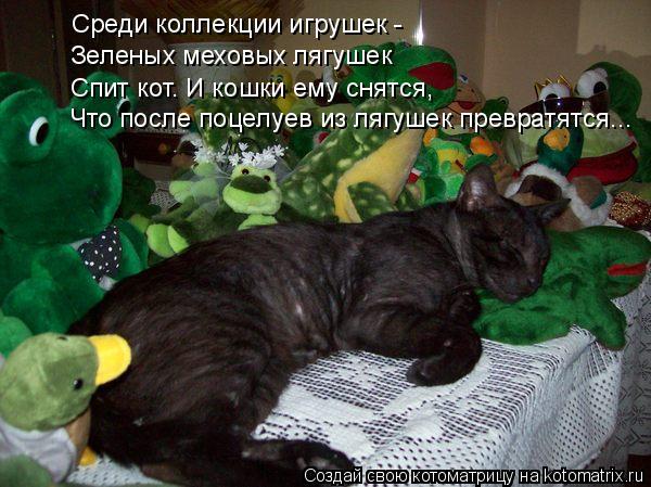 Котоматрица: Среди коллекции игрушек -  Зеленых меховых лягушек Спит кот. И кошки ему снятся, Что после поцелуев из лягушек превратятся...