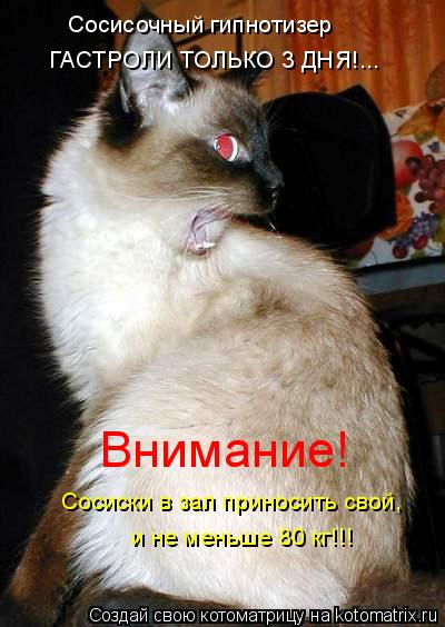 Котоматрица: Сосисочный гипнотизер  ГАСТРОЛИ ТОЛЬКО 3 ДНЯ!... Внимание!  Сосиски в зал приносить свой,  и не меньше 80 кг!!!