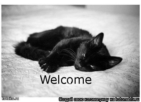 Котоматрица: Welcome Welcome .