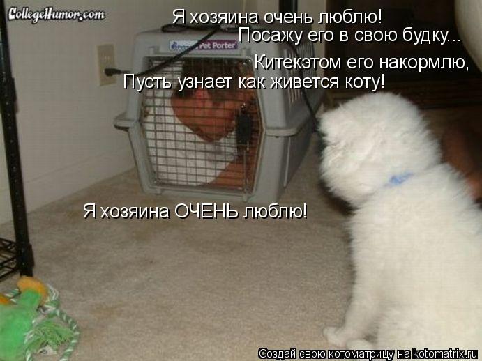 Котоматрица: Я хозяина очень люблю! Посажу его в свою будку... Китекэтом его накормлю, Пусть узнает как живется коту! Я хозяина ОЧЕНЬ люблю!
