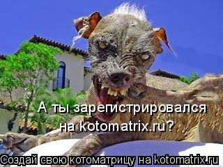 Котоматрица: А ты зарегистрировался  на kotomatrix.ru?