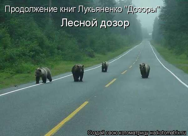 """Котоматрица: Продолжение книг Лукьяненко """"Дозоры"""" Лесной дозор"""