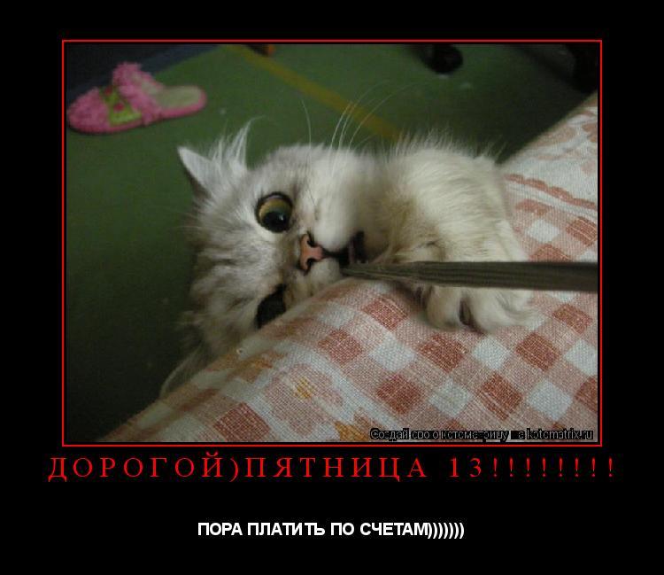 Котоматрица: Дорогой)ПЯТНИЦА 13!!!!!!!! ПОРА ПЛАТИТЬ ПО СЧЕТАМ)))))))