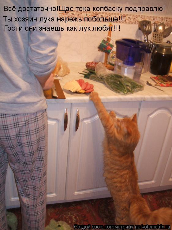 Котоматрица: Всё достаточно!Щас тока колбаску подправлю! Ты хозяин лука нарежь побольше!!! Гости они знаешь как лук любят!!!
