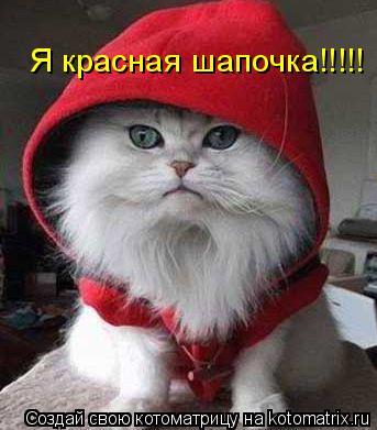 Котоматрица: Я красная шапочка!!!!!