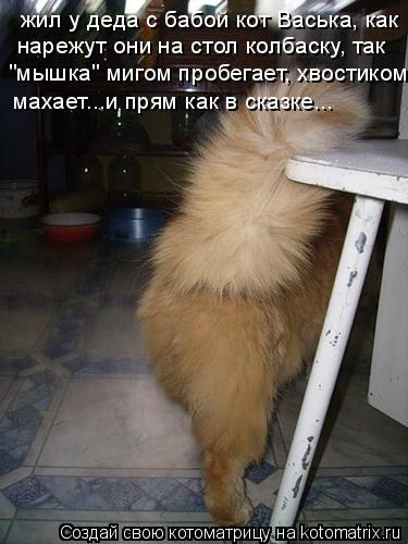 """Котоматрица: жил у деда с бабой кот Васька, как нарежут они на стол колбаску, так """"мышка"""" мигом пробегает, хвостиком  махает...и прям как в сказке..."""
