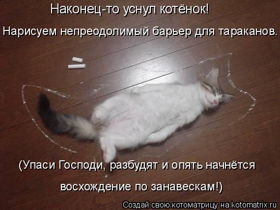 Котоматрица: Наконец-то уснул котёнок! Нарисуем непреодолимый барьер для тараканов. (Упаси Господи, разбудят и опять начнётся восхождение по занавескам