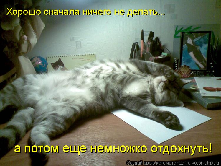 Котоматрица: Хорошо сначала ничего не делать... а потом еще немножко отдохнуть!