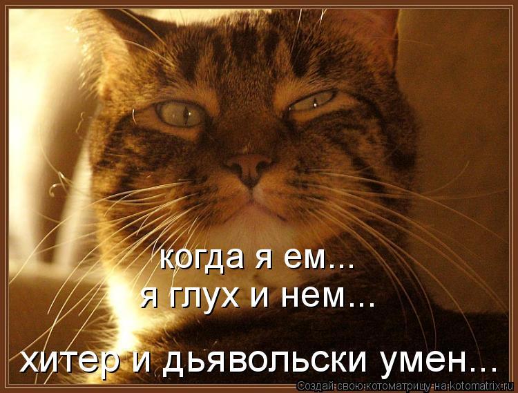 Котоматрица: когда я ем... я глух и нем... хитер и дьявольски умен...