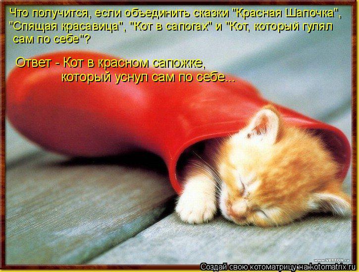 """Котоматрица: Что получится, если объединить сказки """"Красная Шапочка"""", """"Спящая красавица"""", """"Кот в сапогах"""" и """"Кот, который гулял сам по себе""""? Ответ - Кот в кра"""