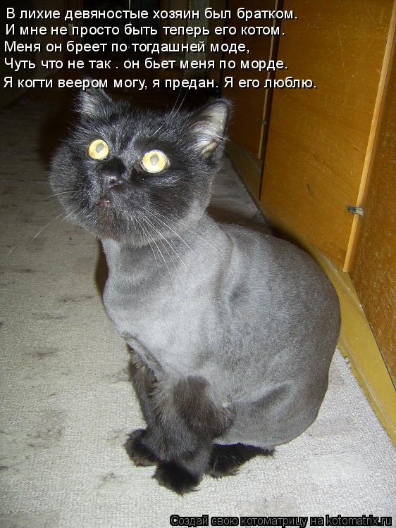 Котоматрица: В лихие девяностые хозяин был братком. И мне не просто быть теперь его котом. Меня он бреет по тогдашней моде, Чуть что не так – он бьет меня