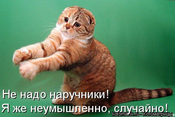 Котоматрица: Не надо наручники! Я же неумышленно, случайно!