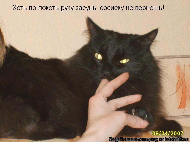 Котоматрица: Хоть по локоть руку засунь, сосиску не вернешь!