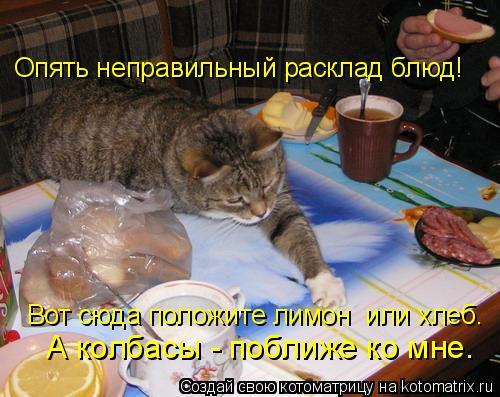 Котоматрица: Опять неправильный расклад блюд! Вот сюда положите лимон  или хлеб. А колбасы - поближе ко мне.