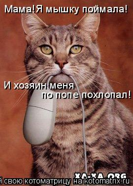 Котоматрица: Мама!Я мышку поймала! И хозяин меня  по попе похлопал!