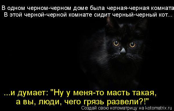 """Котоматрица: В одном черном-черном доме была черная-черная комната В этой черной-черной комнате сидит черный-черный кот... ...и думает: """"Ну у меня-то масть т"""