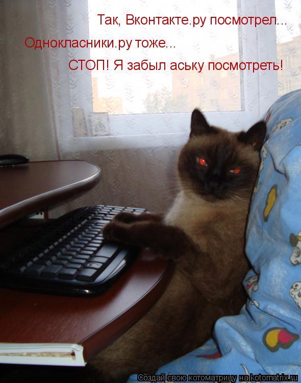 Котоматрица: Так, Вконтакте.ру посмотрел...  Однокласники.ру тоже...  СТОП! Я забыл аську посмотреть!