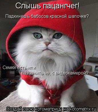 Котоматрица: Слышь пацангчег! Семки есть или  пазванить че, с видеокамерой? Падкинешь бабосов красной шапочке?