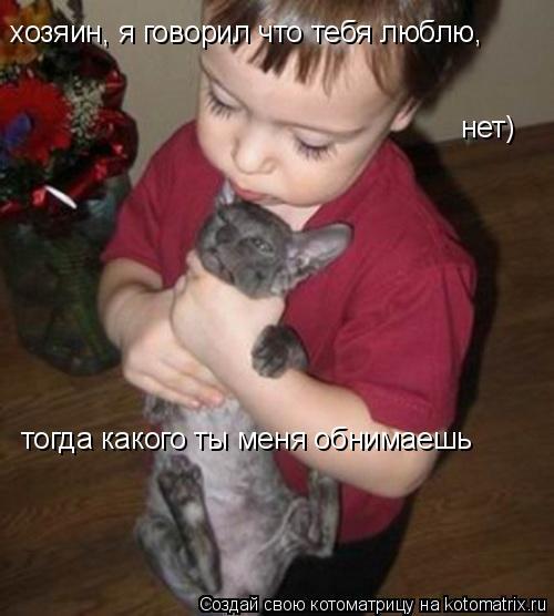 Котоматрица: хозяин, я говорил что тебя люблю, нет) тогда какого ты меня обнимаешь